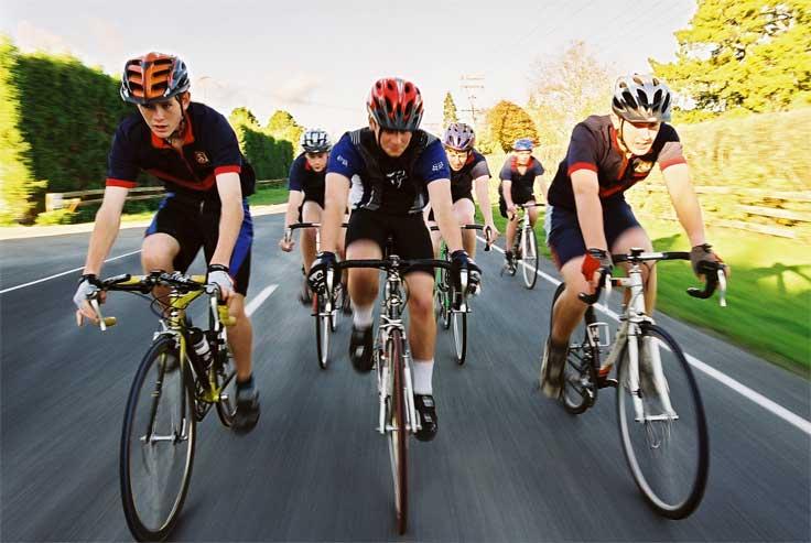 cycling_companions.jpg